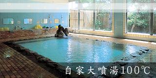 熱川荘 スタンダードプラン☆(1泊2食付 100℃の源泉かけ流し温泉♪)