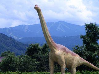今話題の日本一の恐竜博物館入場券付き、安心1泊2食付プラン