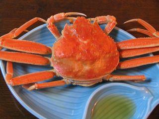 【期間限定】越前蟹(セイコガニ)&ワンドリンク付き★お得な2食付プラン!