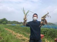 【ファミリーにおすすめ】学ぶ休日!特典付き有機農業体験  1泊2食