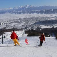 《富良野スキー場1日リフト券&朝食付》:*・☆.スキー&スノーボード☆:*・.満喫プラン♪