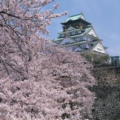 【歴史の町、大阪・堺をめぐる旅】春のシンプルステイ☆朝食付き