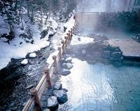 【大雪山国立公園内の一軒宿】秘湯満喫プラン