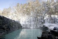【大雪山国立公園内の秘境宿】秘湯満喫プラン