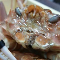 ≪オーベルジュde地蟹≫厳選地蟹・松葉蟹〜「極上」松葉蟹尽くし拘りコース【せいこ蟹のテリーヌ付】