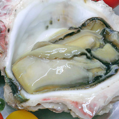 """【季節限定】初夏〜夏は""""ぷりっぷり""""の大きな「丹後の岩牡蠣」をご賞味あれ♪"""