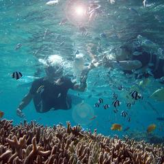 【連泊におすすめ】沖縄でたっぷり夏の体験♪エンジョイサマー(朝食付)