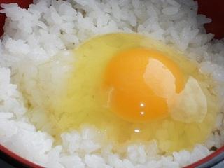 朝食はこだわり卵のTKG!! お得な朝食付きカプセルプラン♪ 【税込3780円】