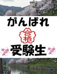 国民宿舎 山紫苑