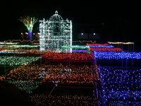 ★ワインプレゼント特典付き】12人以上クリスマス団体割引プラン
