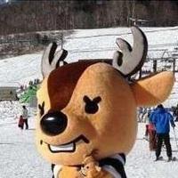 【リフト1日券特典付きプラン】コテージに泊まってスキー&スノボーを大満喫♪