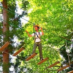 いざ!森林の大冒険に出発!フォレストアドベンチャー。・゜☆