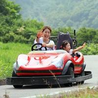 【世界最大級!】湯沢高原アルプの里 ロープウェイ乗車券付☆高原散策プラン