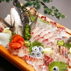 【期間限定】旬の舟盛&特選ふぐ料理プラン[1泊2食付]