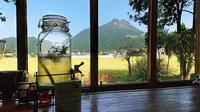 ・【素泊まり】<50歳以上のご夫婦◆特典付き>自家製ハーブティサービス☆由布岳を眺めながらゆっくり♪