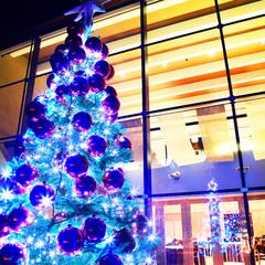 【12月15日〜25日限定】 《クリスマスブッフェ&ドリンク付き》特別ステイプラン