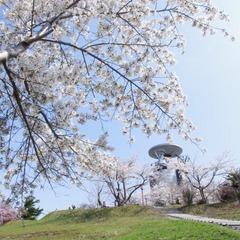【GW】☆★ゴールデンウィーク 4月29日〜5月4日限定☆★特別和洋会席プラン