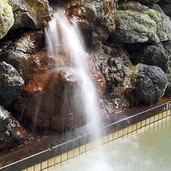 【朝食付】善光寺徒歩5分!表参道に面した純和風旅館を観光の拠点に長野を満喫♪