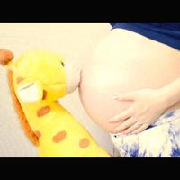 【四季会席】マタニティプラン☆妊婦さん大歓迎◎赤ちゃん大歓迎◎【素敵な思い出に♪】