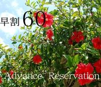 【60日前のご予約】早めのご予約がお得!寛ぎOcean Garden stay [朝食付]