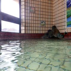 【直前割】■2食+昼食おにぎり弁当■尾瀬ハイキング応援!美人の湯の温泉で癒されよう♪