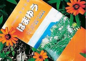 温泉民宿はまゆう 関連画像 1枚目 楽天トラベル提供