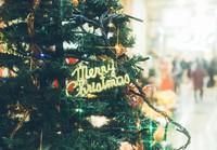 【ラグナクリスマス2017】ピエール マルコリーニのチョコレート付き♪チャペルの特別貸し出しも!