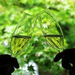 【シャンパン付きプラン】 〜大切な日を大切な人と山みず木で〜
