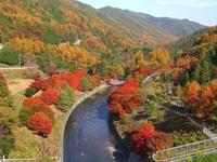 【秋限定】横川渓谷の紅葉とかやぶきの館 入浴プラン