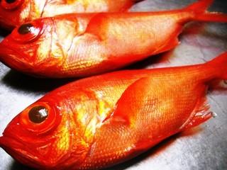 人気の地金目鯛 姿煮プラン 【人気の地金目鯛を丸ごと使った姿煮つけを味わえます】