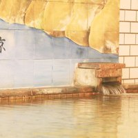 【1泊2食付】旬の食材を使った御食事と24時間入浴可能な猿ヶ京温泉で大満足♪☆365日同一料金☆