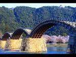 【冬の当館人気ナンバーワン!】グルメプラン・大野瀬戸・牡蠣フルコース