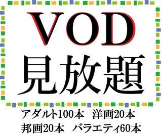 【朝食付き】VOD(アダルト100本・映画40本・バラエティ60本)見放題シングルプラン