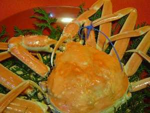 料理旅館 浜乃屋 関連画像 4枚目 楽天トラベル提供