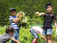 【お子さま連れ歓迎】【6〜10月限定】 黒滝の大地で育った、収穫体験付プラン