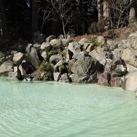 《朝食付き》観光や一人旅におすすめ♪霧島神宮の森でマイナスイオン吸収(≧∇≦)