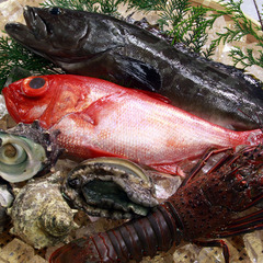 【青光】−八光海鮮◆お気軽コース − [1泊2食]