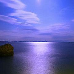 ≪グレードアップ≫海を知り尽くした主人が魅せる海鮮料理【現金特価】