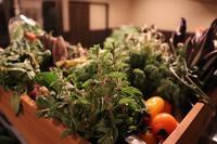 一泊二食オーガニック野菜イタリアンディナーコースプラン