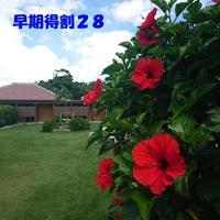 ホテルピースアイランド竹富島