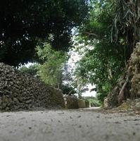 【沖縄県民限定プラン】たまには竹富島でのんびり〜【朝食付き】