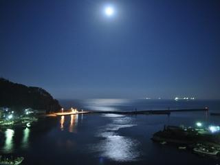 【日本海の旬魚盛!】通常のお造りからグレードアップ☆彡≪舟盛≫×海鮮会席プラン