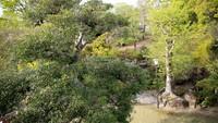 ≪朝食付き≫【和食or洋食】駅館川が見えるレストランで選べる朝食を満喫♪
