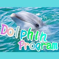 【イルカハウス入場券付】イルカに会える島 「イルカウォッチング」体験♪潮騒