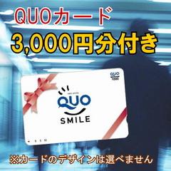 【クオカード付】〜コンビニ等で使えるQUOカード3,000円分付〜出張の名人が選ぶ人気プラン!