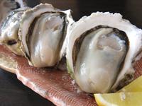 岩牡蠣と真牡蠣の食べ比べ会席と松阪牛陶板焼きプラン