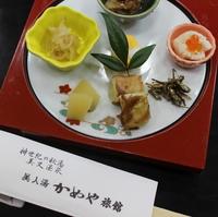 速報!! 【年越し・新春特別プラン】 新年は特別な料理と温泉でのんびりゆったり♪♪〔1泊2食付〕