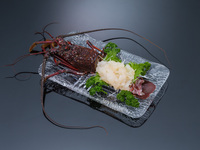 【豪華】黒潮の新鮮活き盛り海鮮会席膳+伊勢海老の姿作り【二食付き】