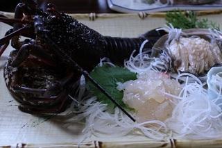 活魚コース Bプラン おみやげ・ドリンク付き 現金特価