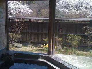【素泊り】カルシュウム鉱泉♪ 格安お勧め素泊まりプラン